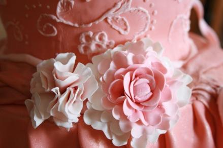 Ballet Dress Cake Take 1 Detail- 2015