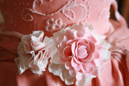 Ballet Dress Cake Take 1 Detail- 2015
