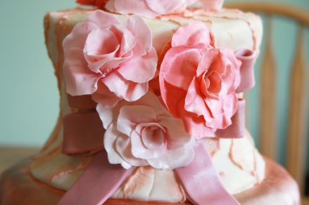 Ballet Dress Cake Detail- 2015