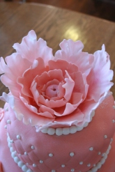 Pearls and Petals Cake