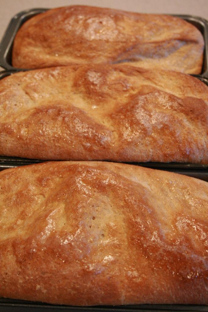 Honey Whole Wheat Bread - Baked