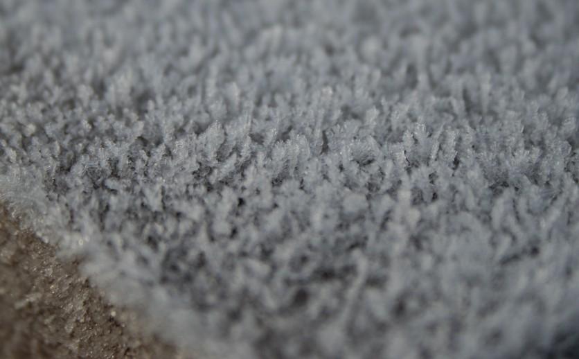 Frozen Fog - 2017