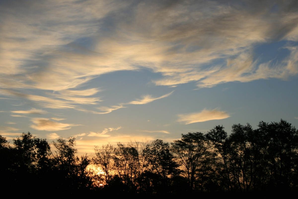 Wispy Sunset