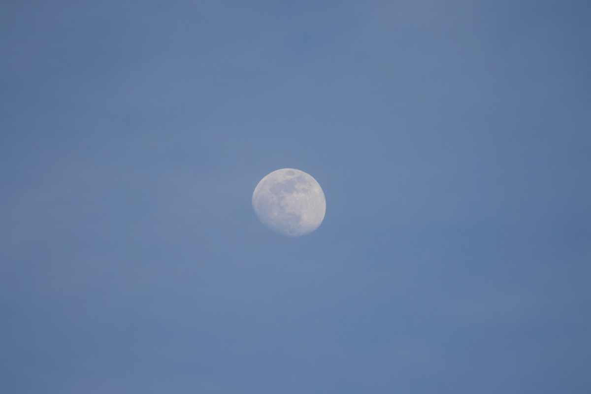 Mid-day Moon