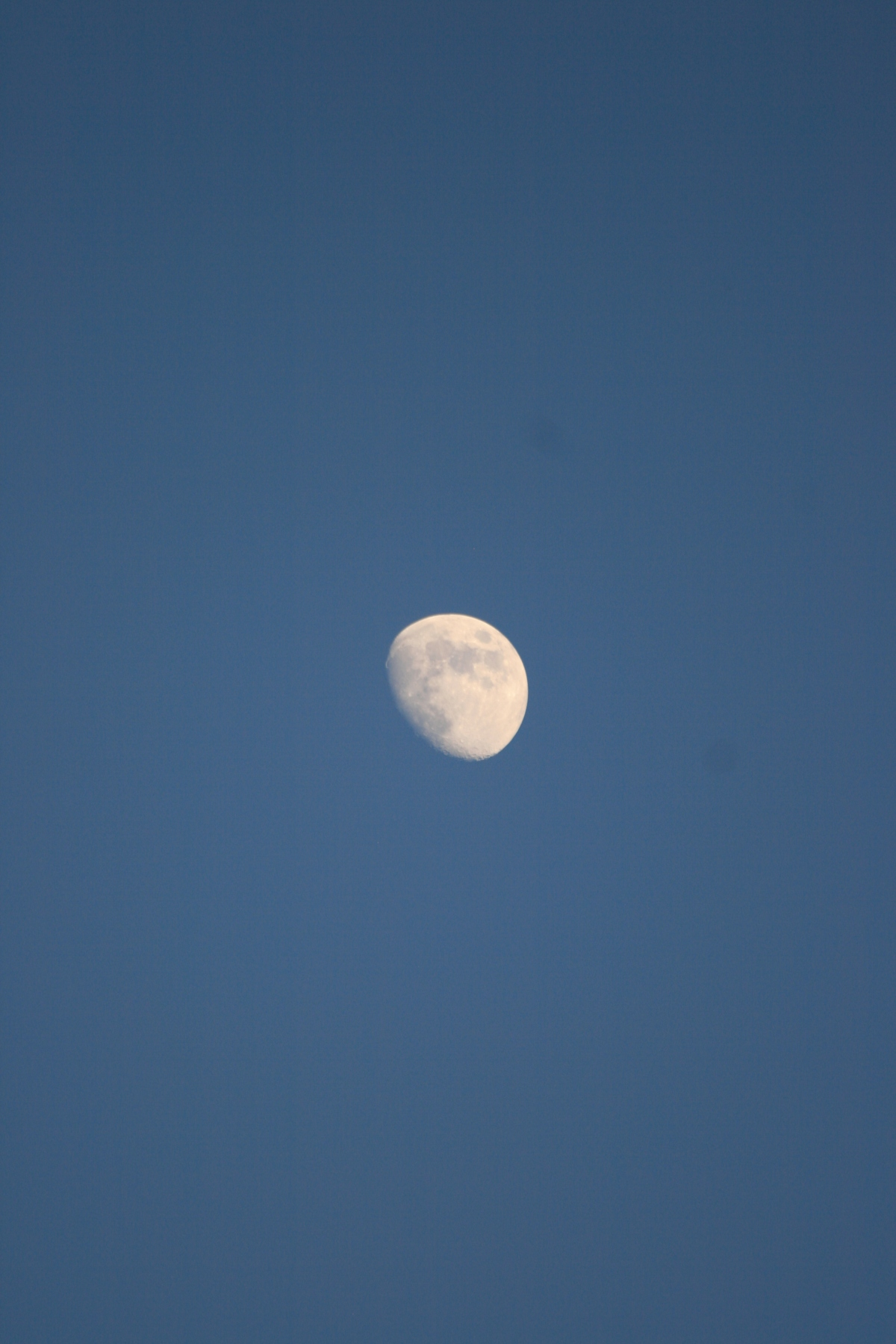 Mid-Day Summer Moon