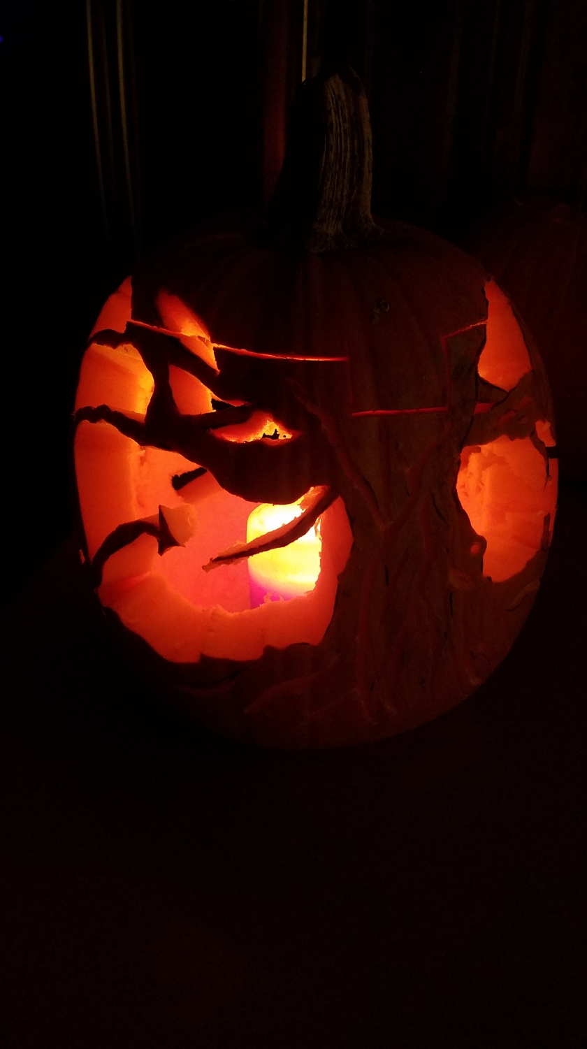 360 Pumpkin 2018 - Back & Side