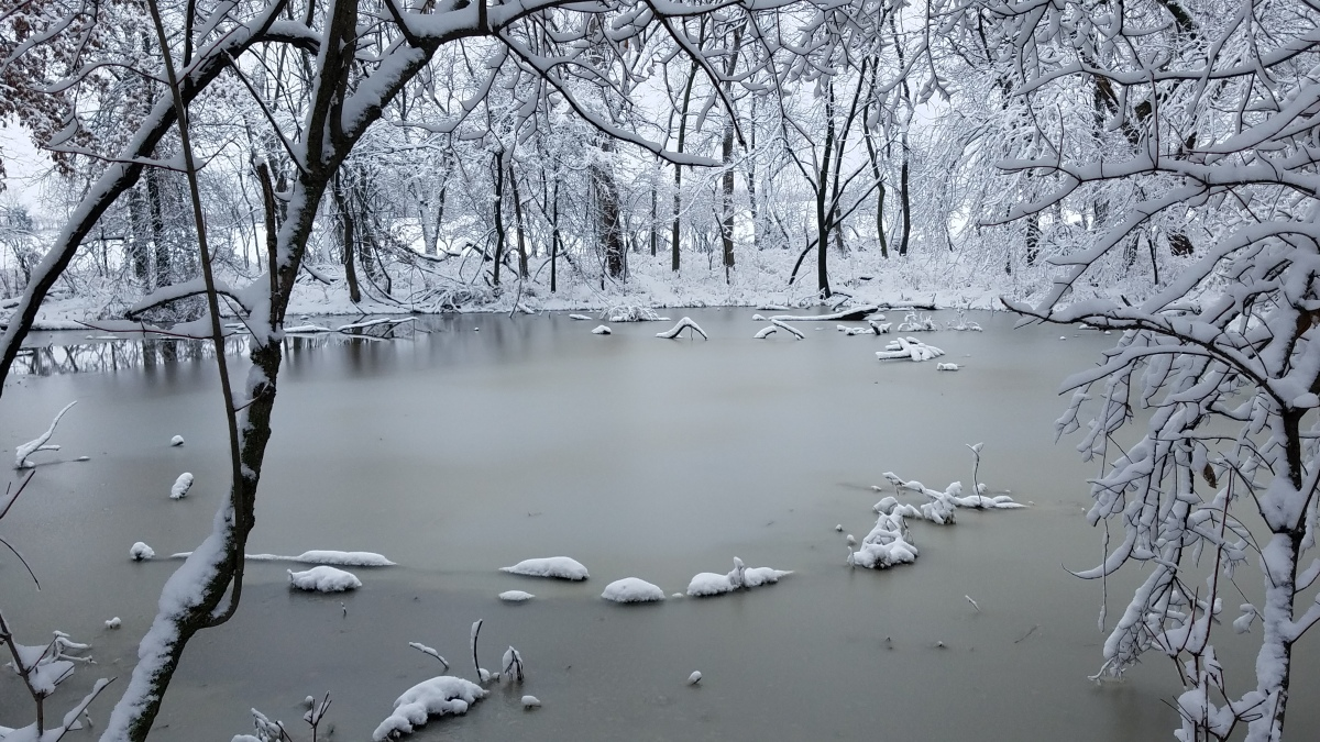 Snow & Ice Pond