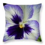 Purple Pansy Pillow