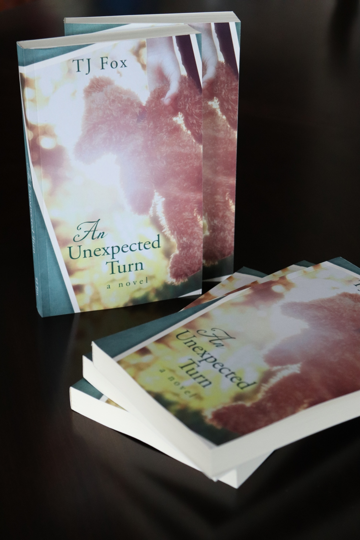 An Unexpected Turn - Paperback Version