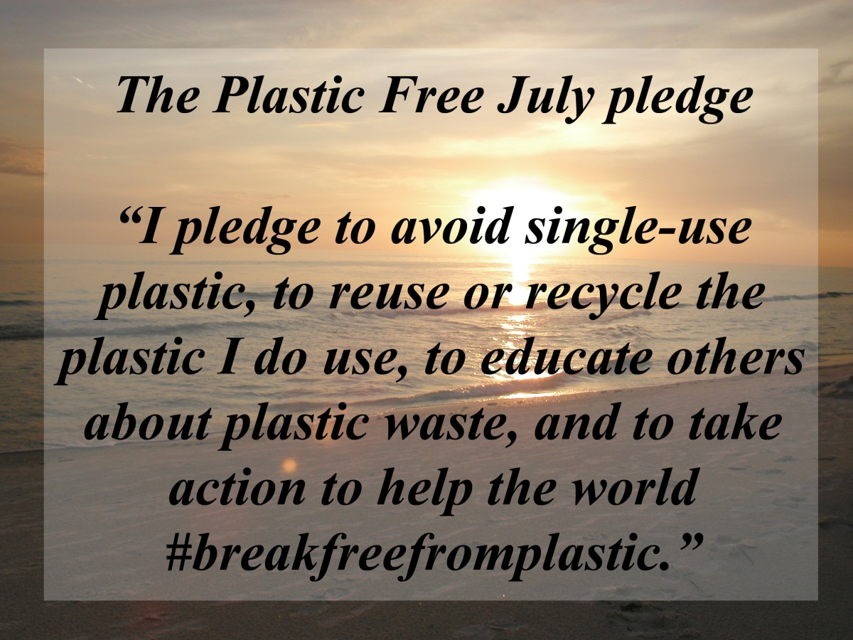 Plastic Free July – Wrap UP: Reuse Where You Can