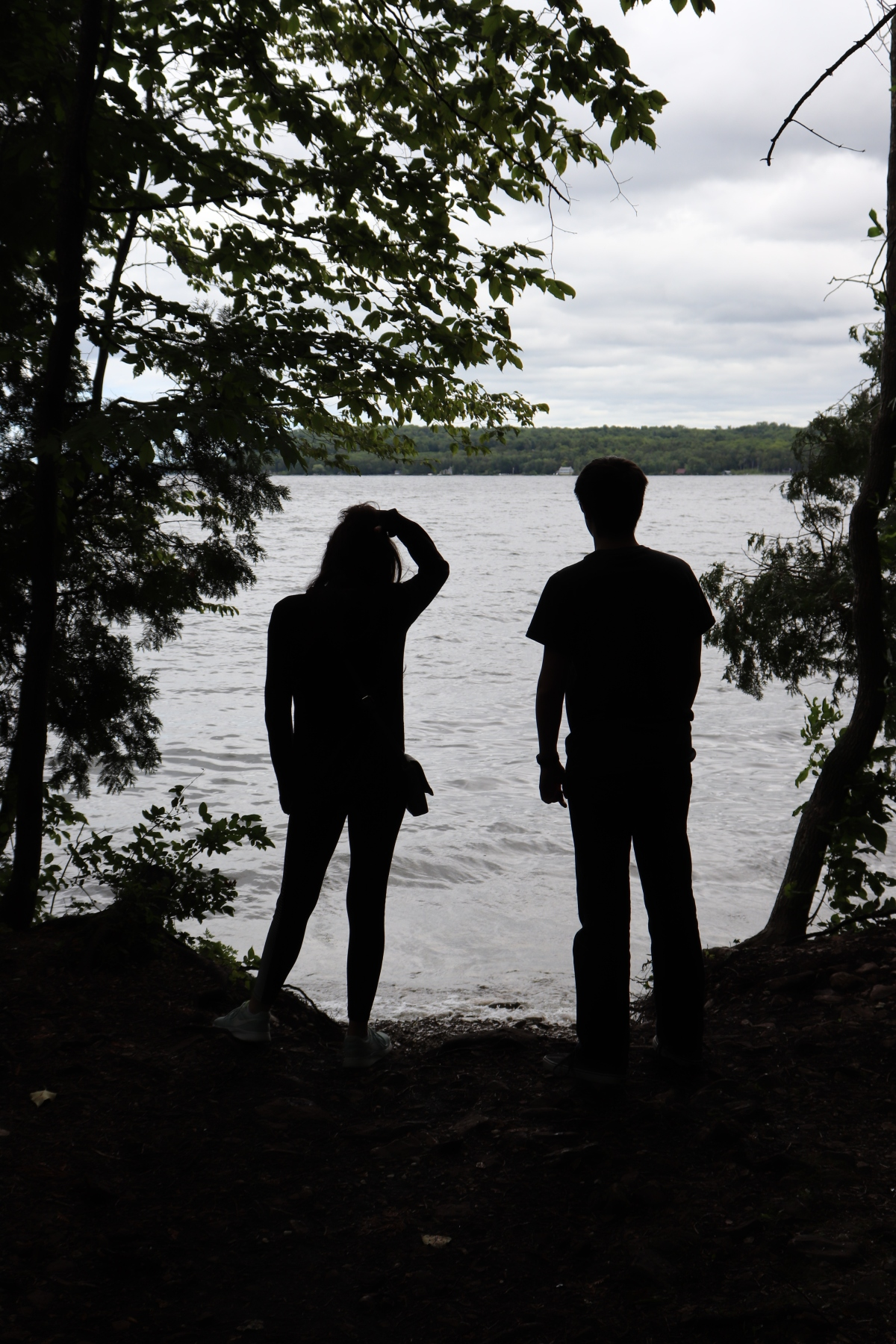 Silhouettes By The Lake