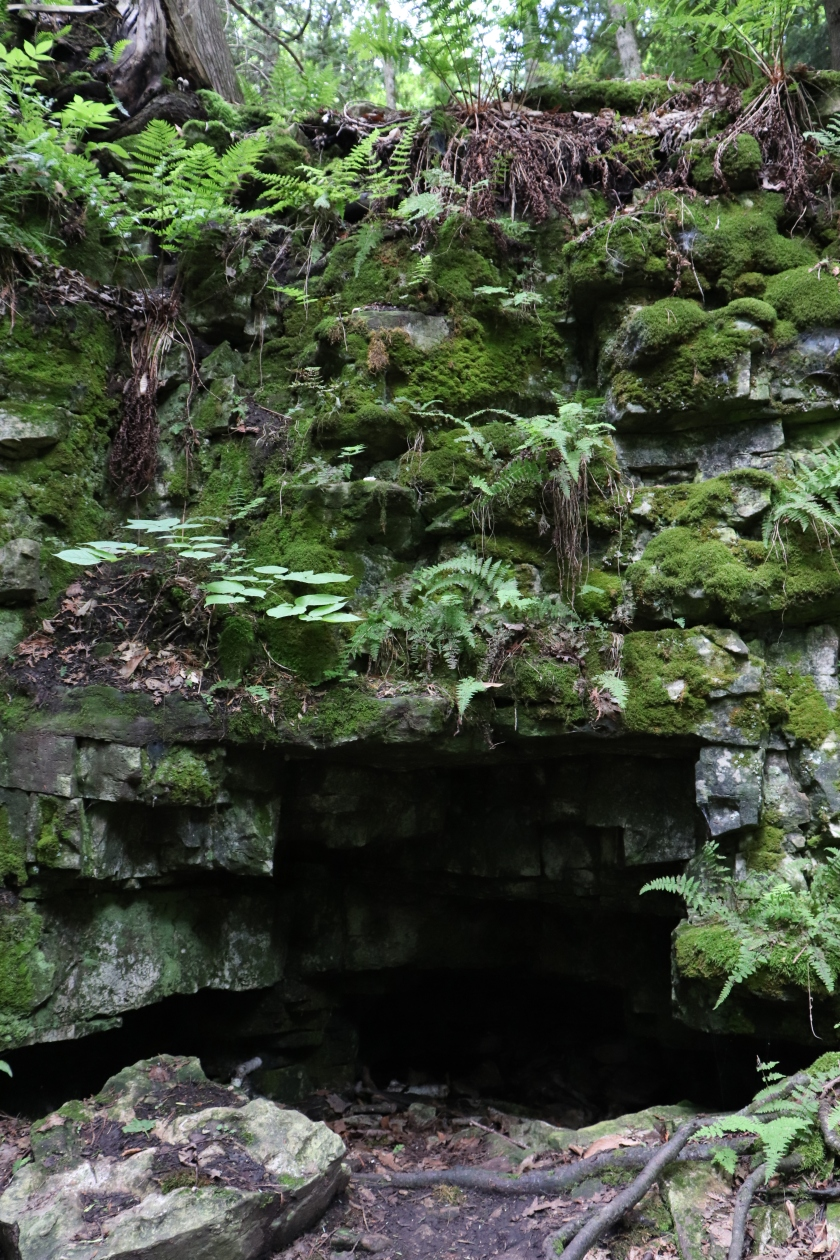 Moss and Fern Covered Mall Cave