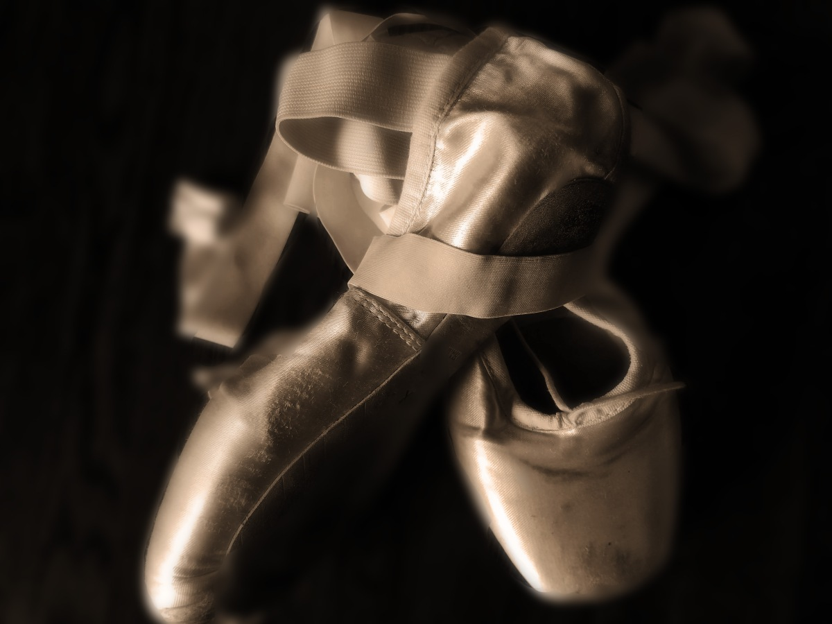 Sepia Pointe Shoes