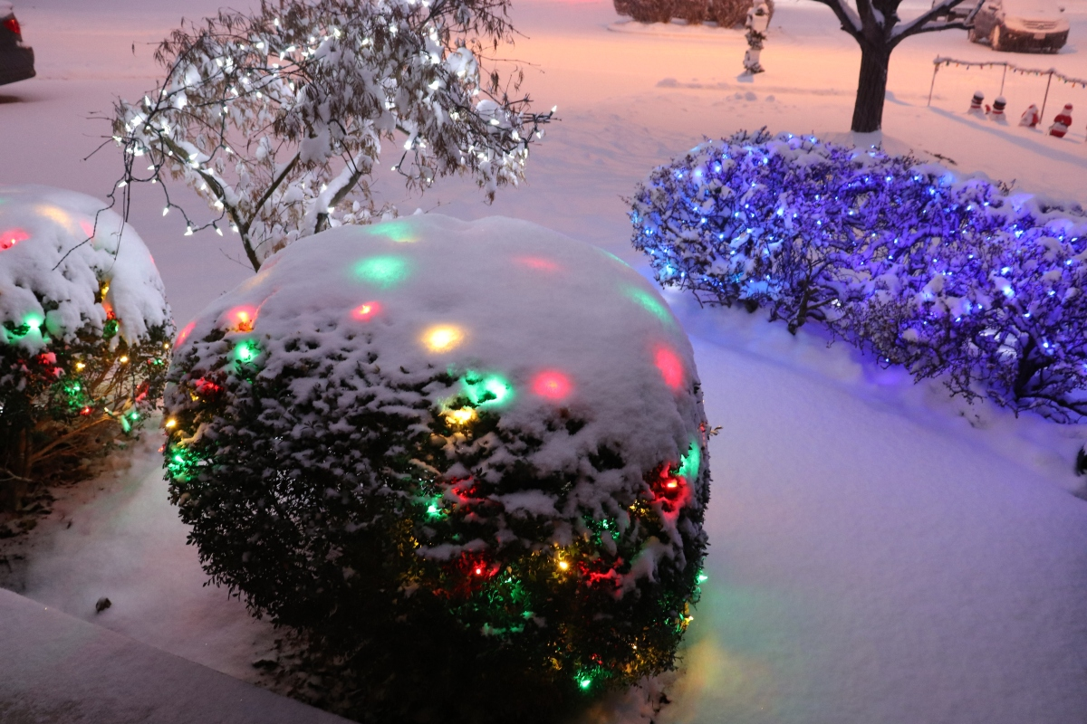 Lights Glowing Under The Snow