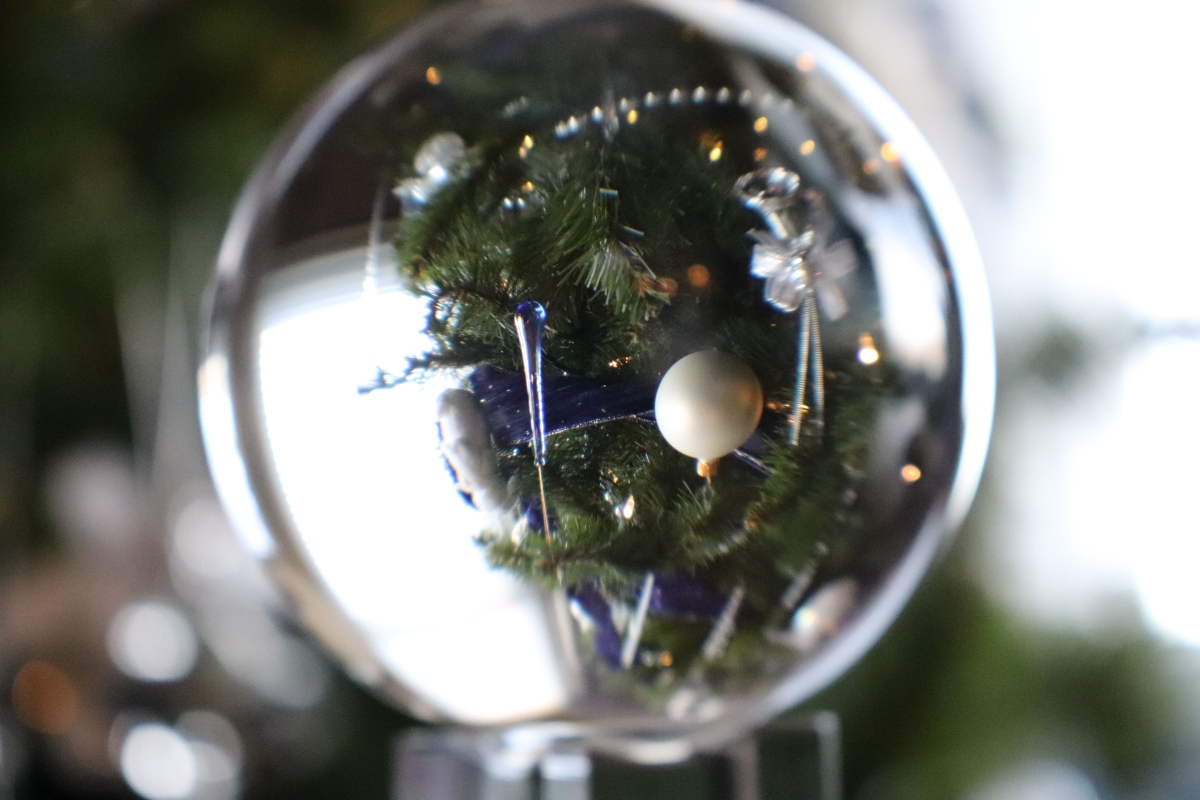 Christmas Tree Through A Sphere