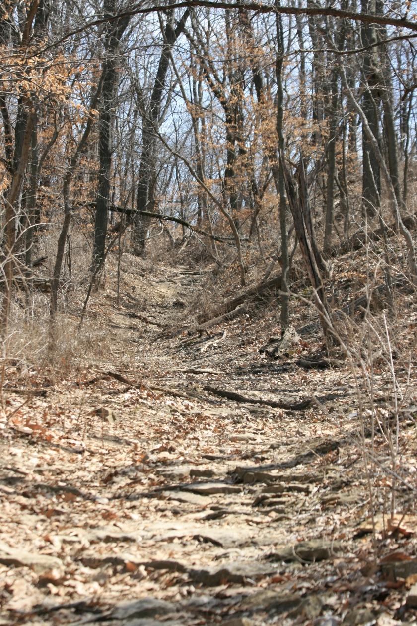 Unedited Pathway Image