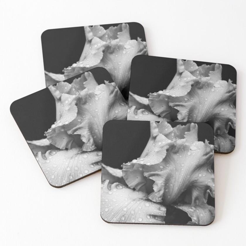 Black and White Rain Kissed Iris Coasters