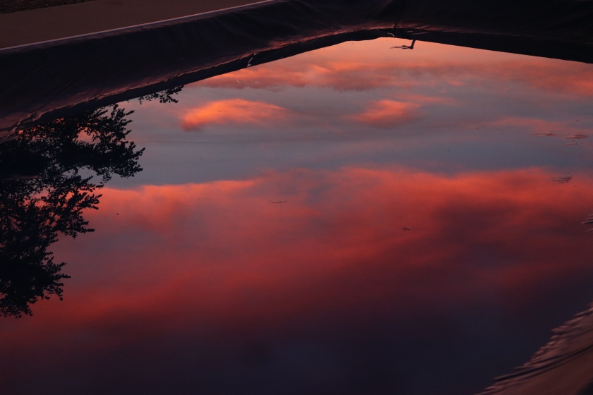 Water Reflection of Orangey Pink Clouds At Sunset